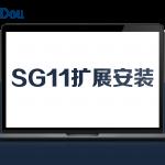 SG11扩展安装